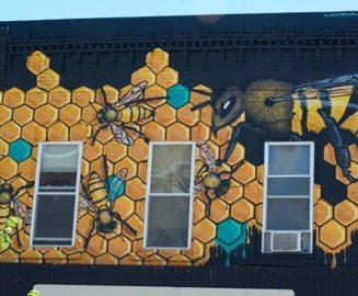 Photo: The Hive